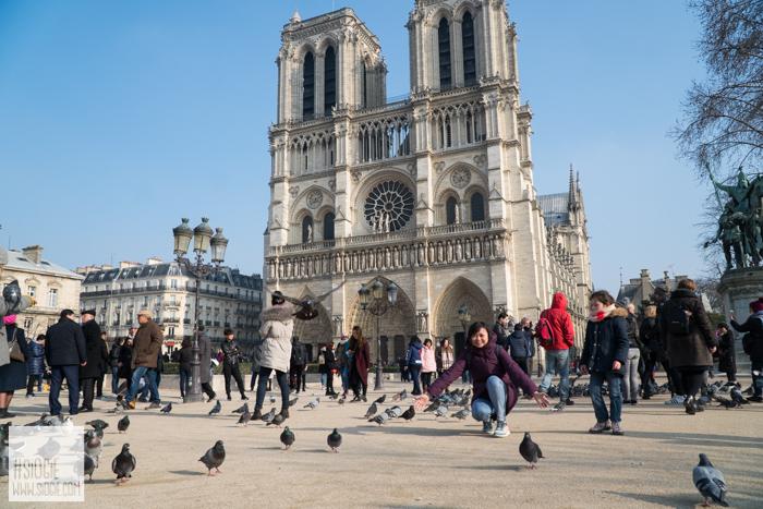 Notre-Dame Cathedral Paris