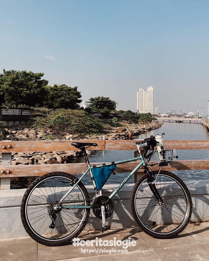 Restorasi Sepeda MTB Jadul