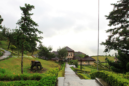 Taman Nasional Gunung Halimun Trip